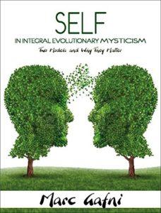 Book Cover: Self In Integral Evolutionary Mysticism
